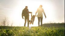 Alles over belastingzaken en toeslagen als u voor co-ouderschap kiest